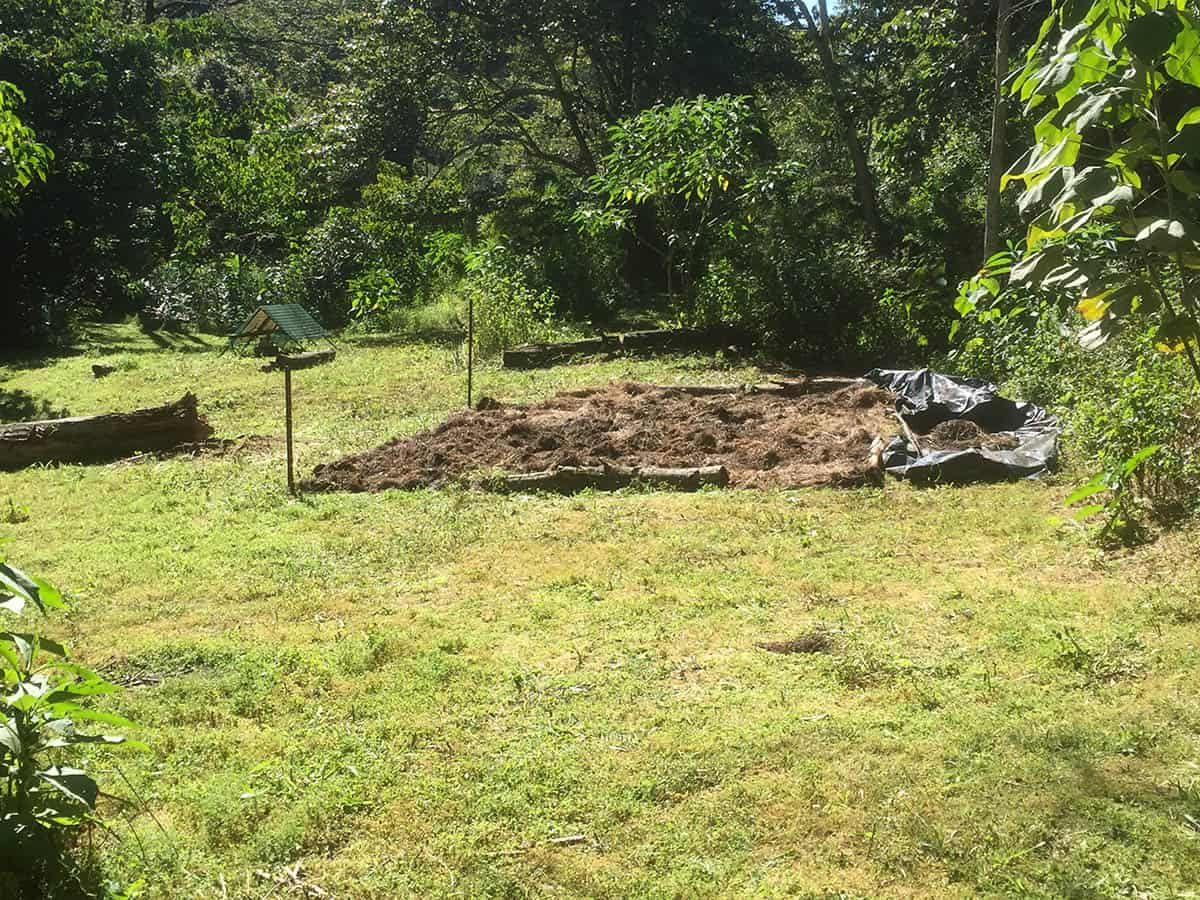New garden area created and mulched