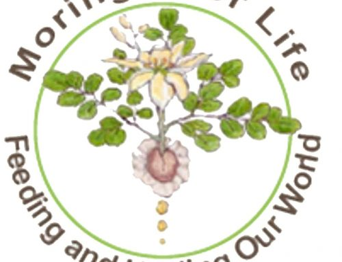 Moringa Growers and Educators Course (in California)