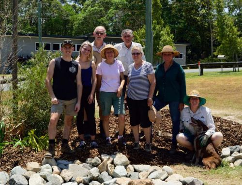Cooroy Community Permaculture Gardens (CCPG) and Harvest Swap