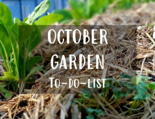 October To-Do-List