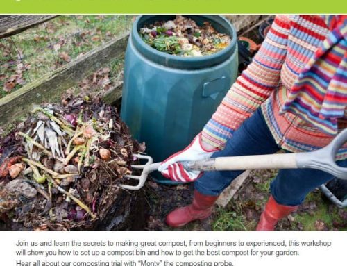 14th November – Composting workshop with Noosa Council & Monty Compost Co!