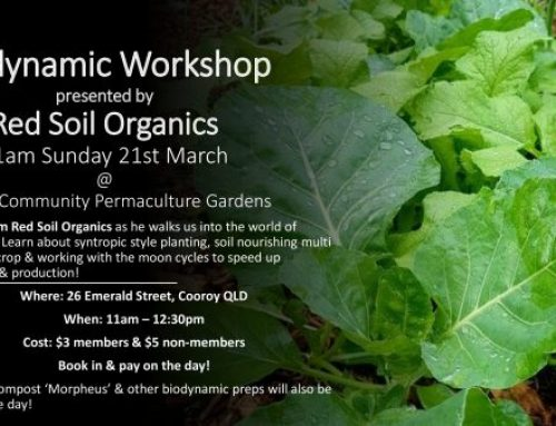 Club Day March 21st– BIODYNAMIC WORKSHOP With Kane from Red Soil Organics